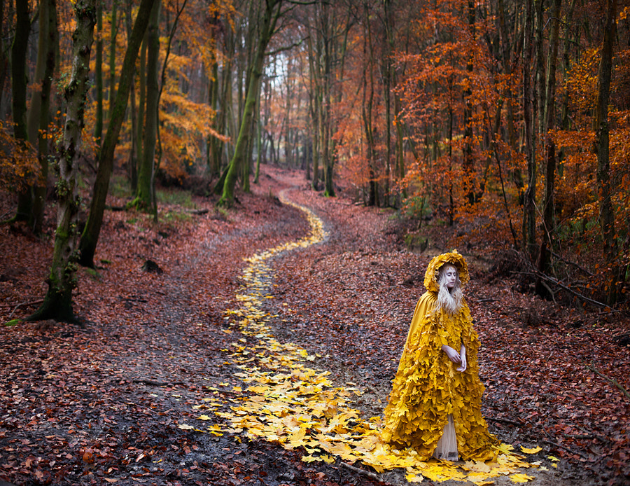 Photograph The Journey Home  by Kirsty Mitchell on 500px