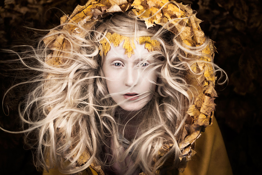Let Your Heart Be The Map, автор — Kirsty Mitchell на 500px.com