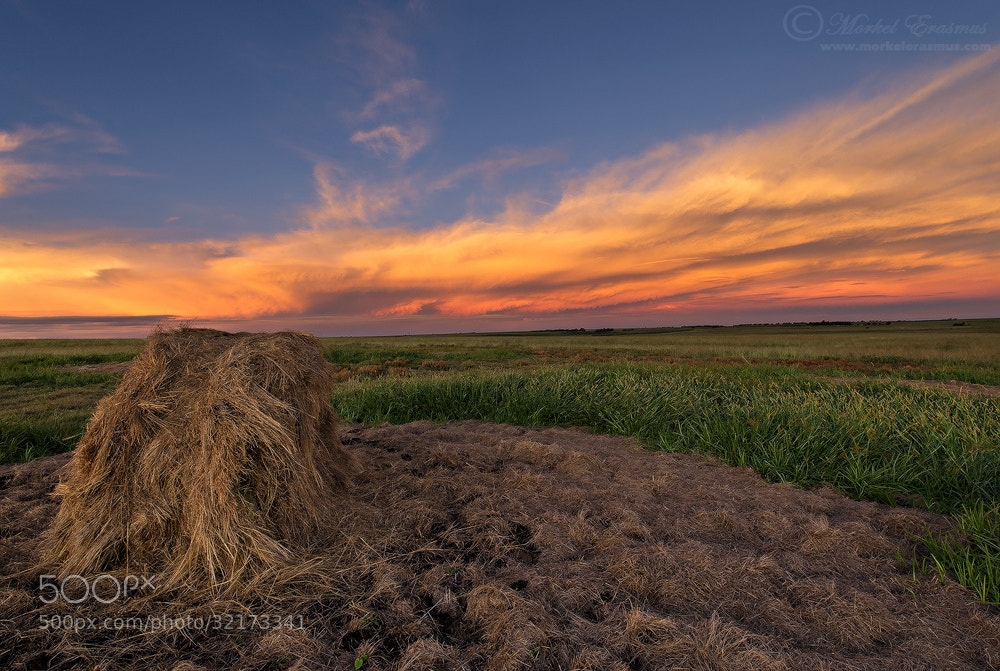 Photograph On the Farm by Morkel Erasmus on 500px