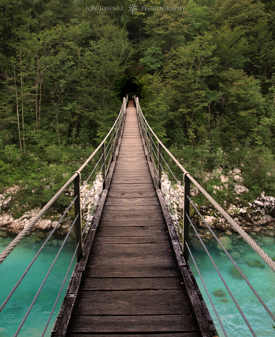 Photograph Bridge to the forest by Jon Jimenez on 500px