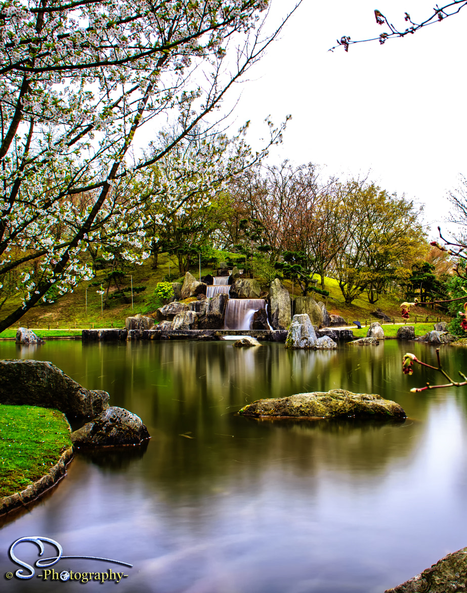 Photograph japanese garden waterfall  by Danny schurgers on 500px