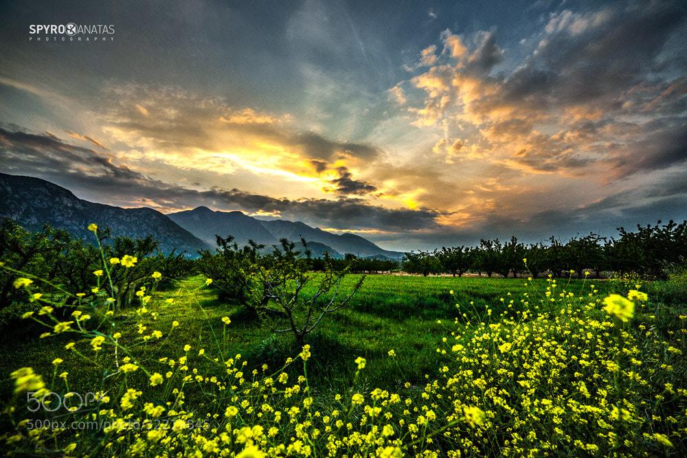 Photograph spring colors. by spyros kanatas on 500px