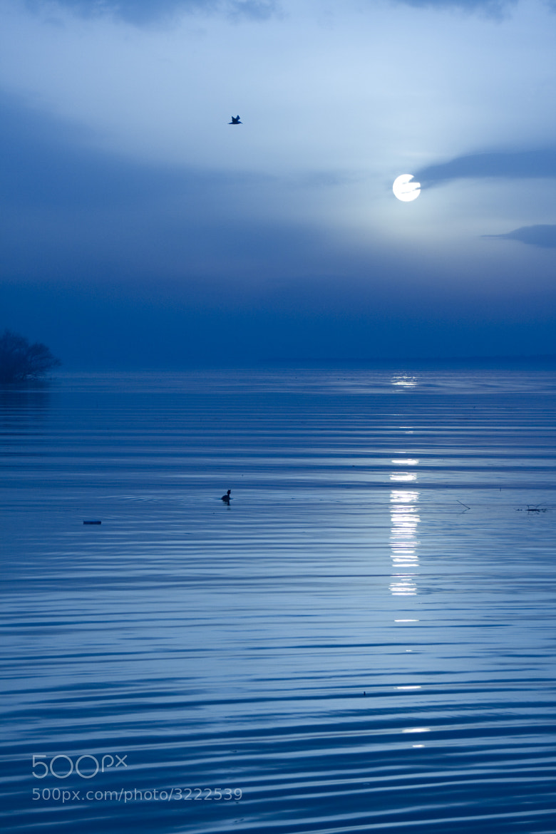 Photograph Moonlight Sonata by Kaan Köse on 500px