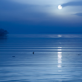 Moonlight Sonata by Kaan Köse (kaankose)) on 500px.com