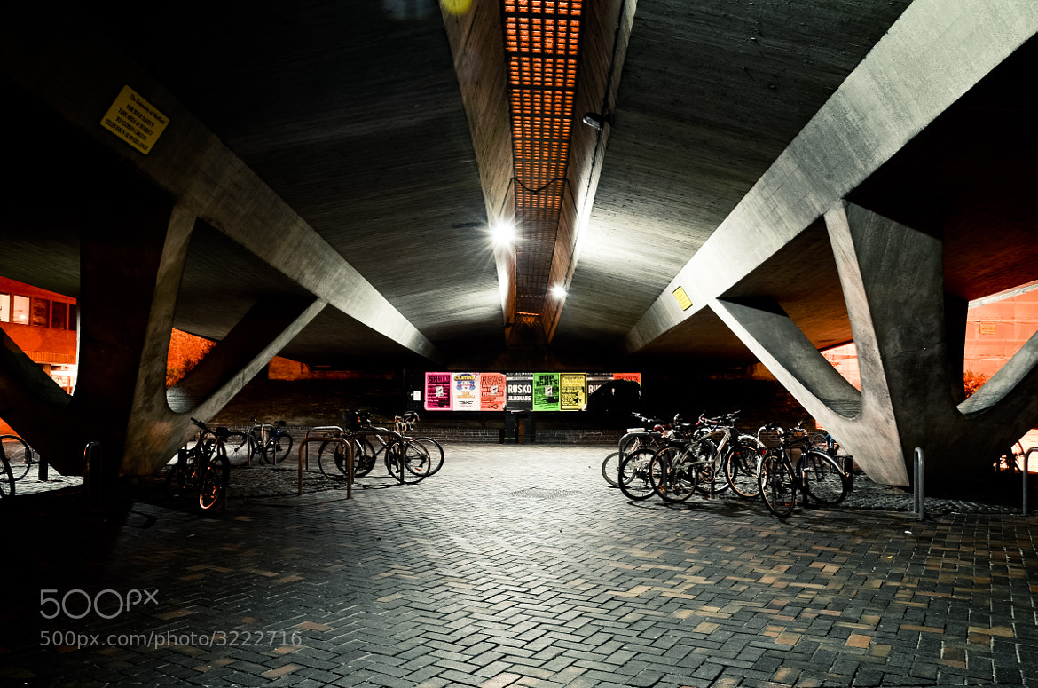 Photograph The Underpass by Shane Rounce on 500px