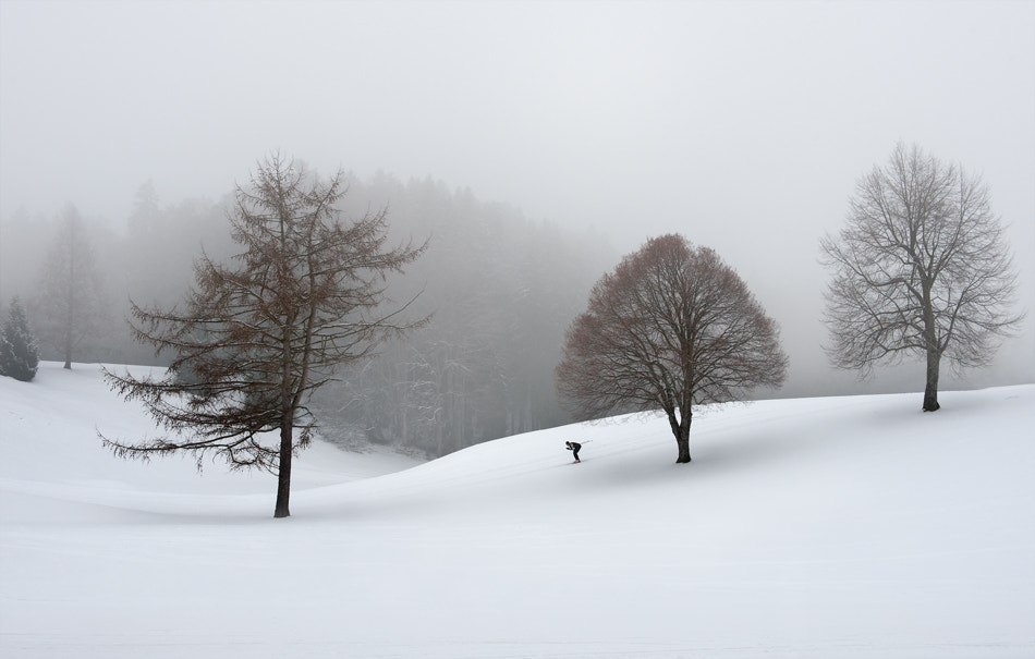 Photograph the loneliness of the cross-country skier by Marei ... on 500px
