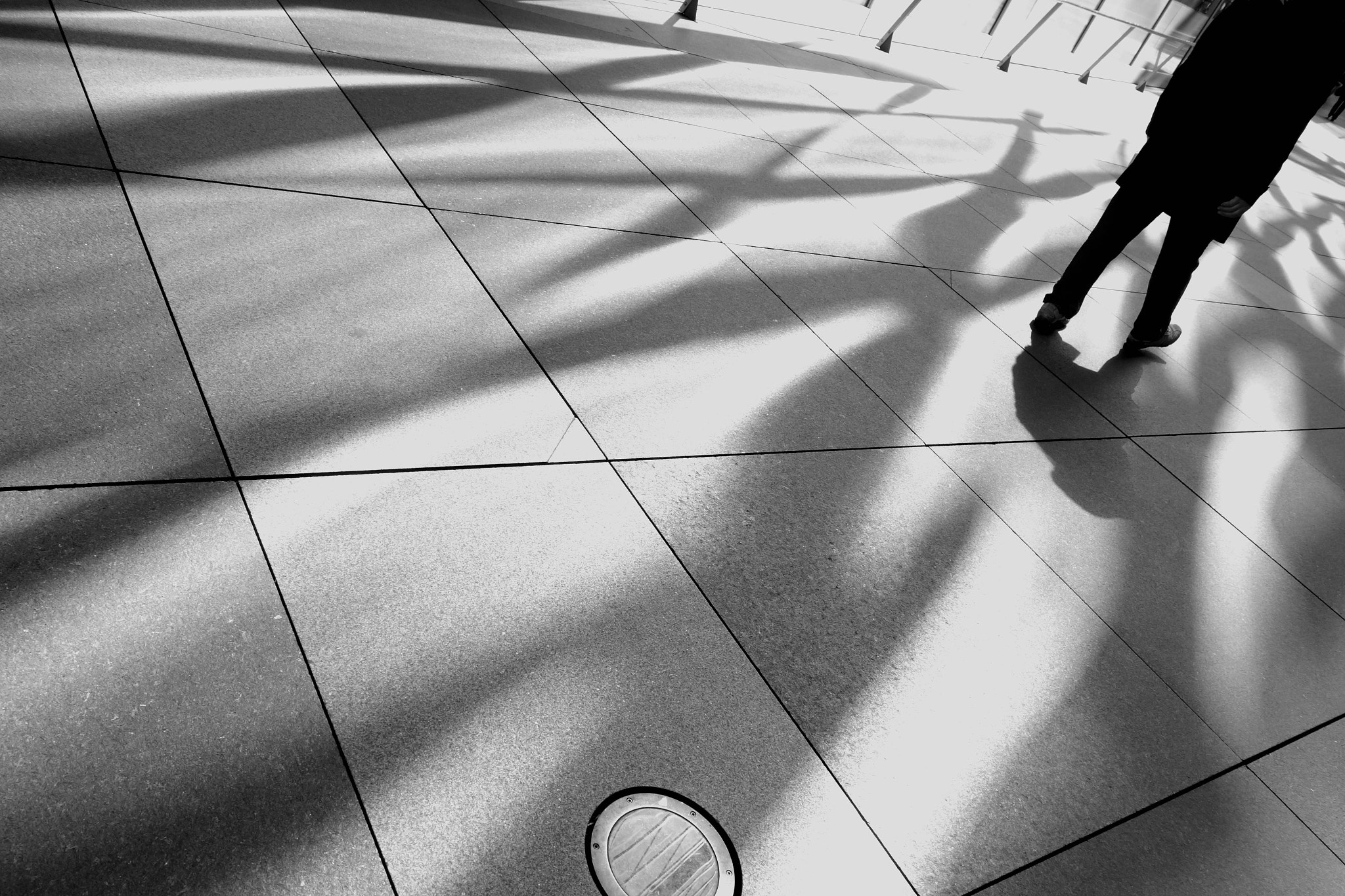 Photograph who's your real shadow? by Yuji Hirai on 500px