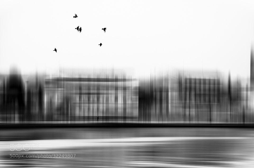 Photograph Freedom by Rafael Kos on 500px