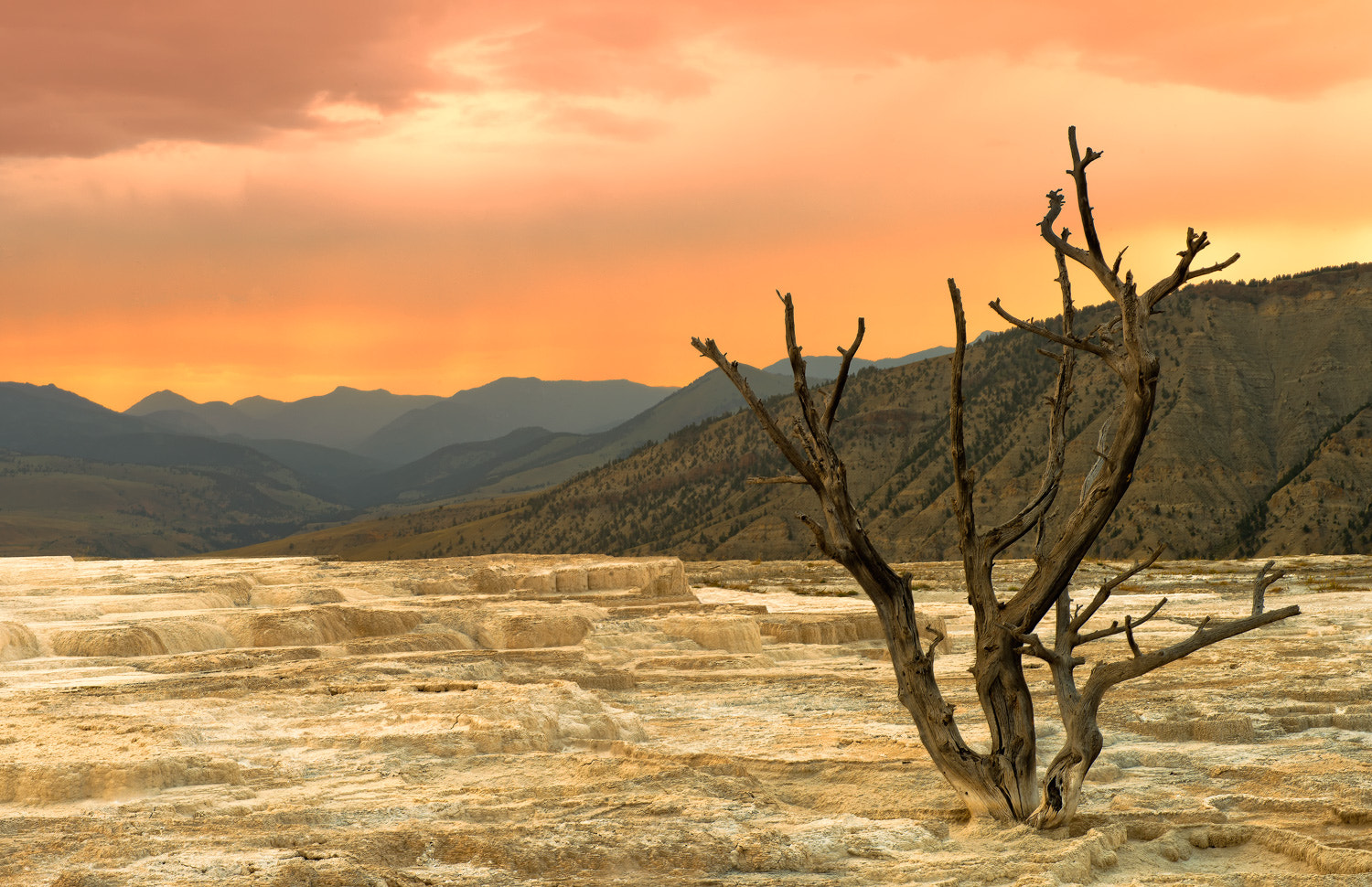 Photograph Mammoth Hot Springs by Ryan Engstrom on 500px