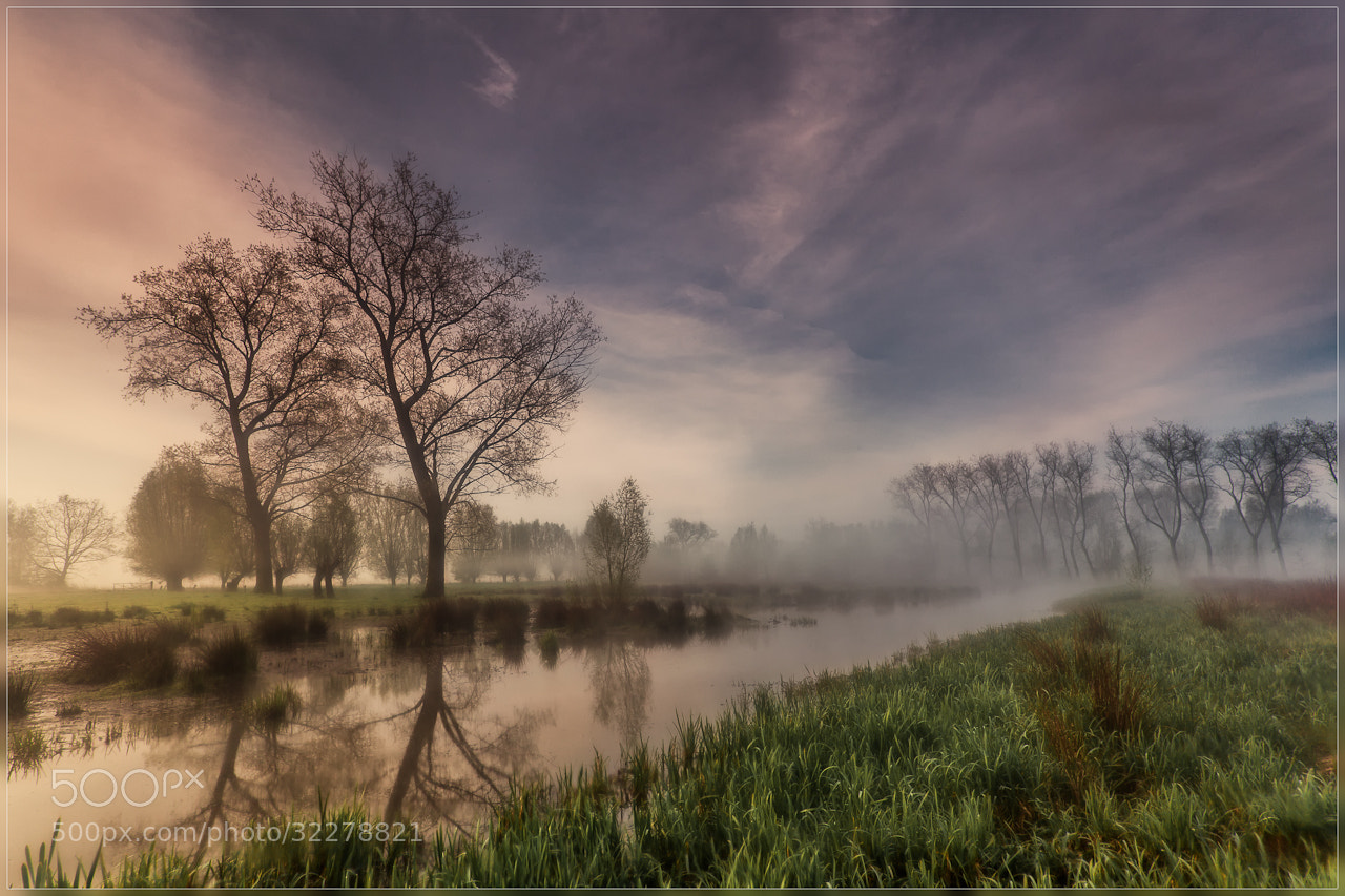 Photograph Misty Morning by Christophe Vandeputte on 500px