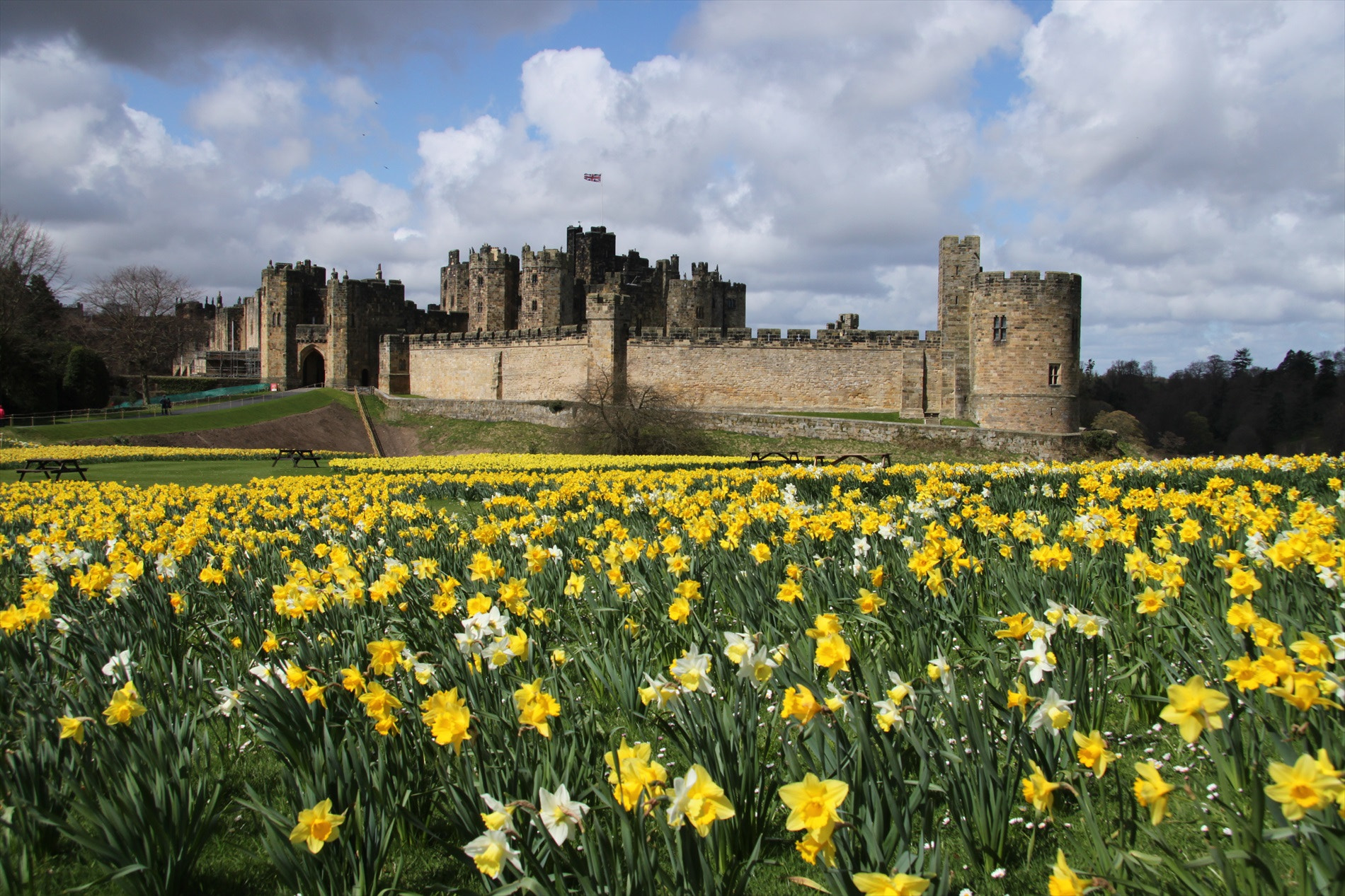 Photograph Alnwick Castle, Northumberland by Ann Chapman on 500px
