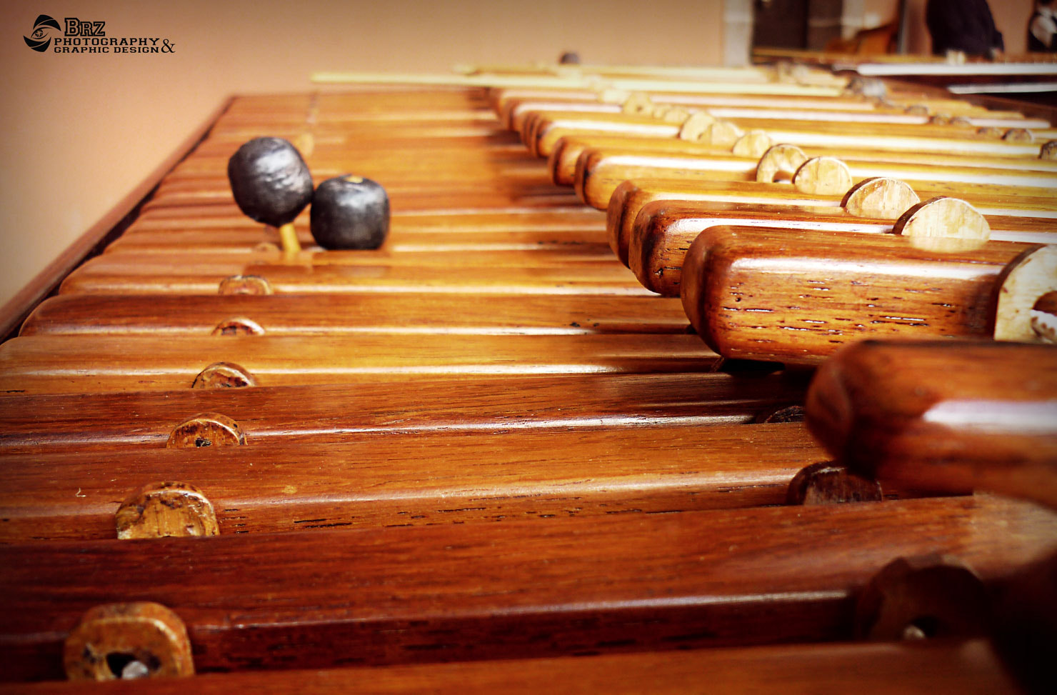 Photograph Marimba by Bresner Morales on 500px