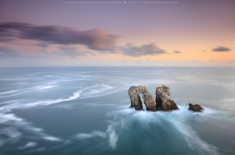 Photograph SWEET AND SOFT by Raquel de Castro on 500px