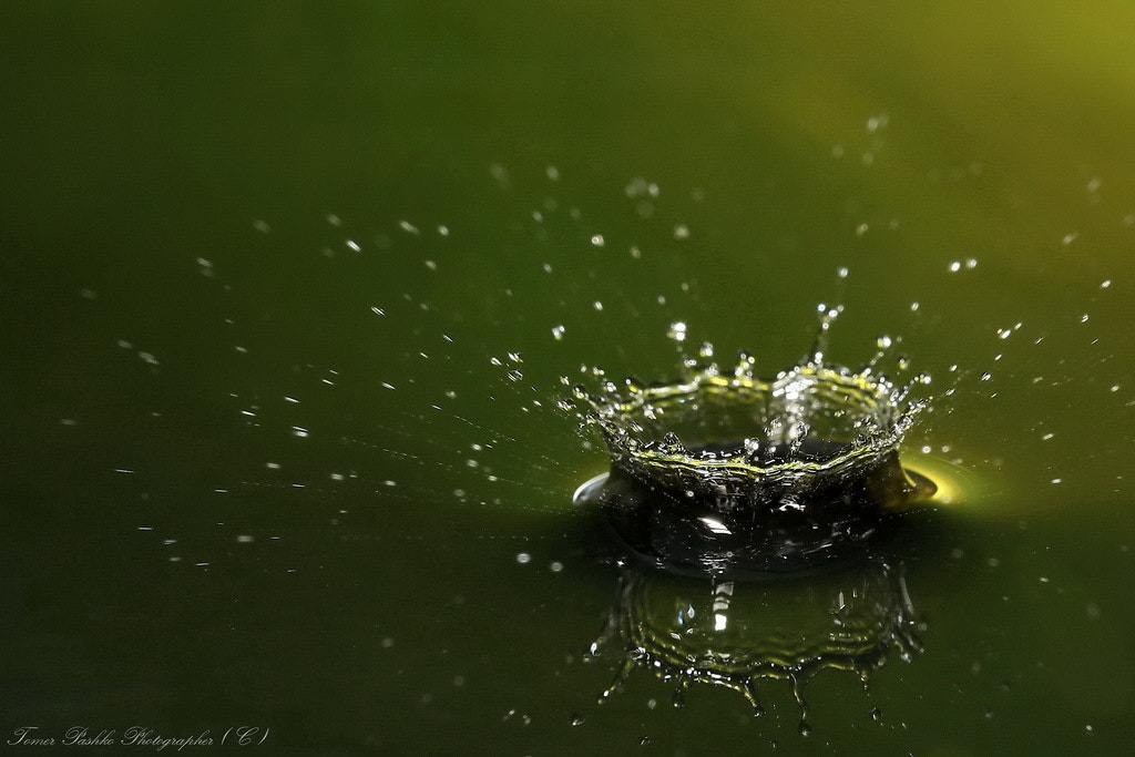 Photograph Drop II by Tomer Pashko on 500px