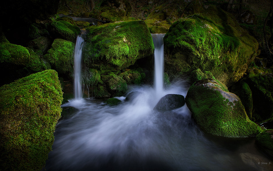Photograph Magic water by Silvia S. on 500px