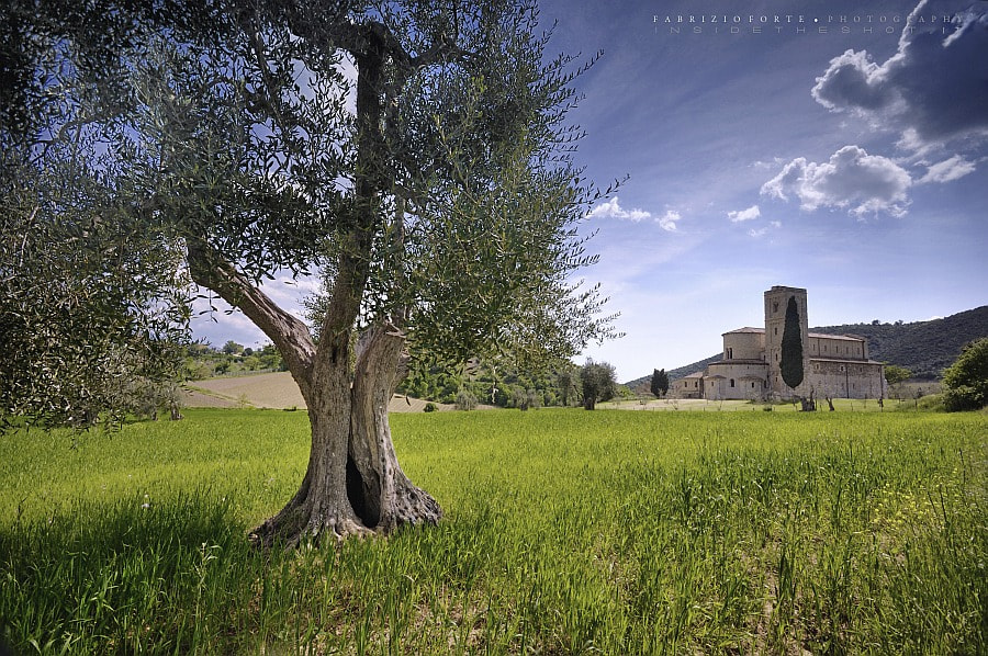 Photograph Tuscany • The Abbey by Fabrizio Forte on 500px