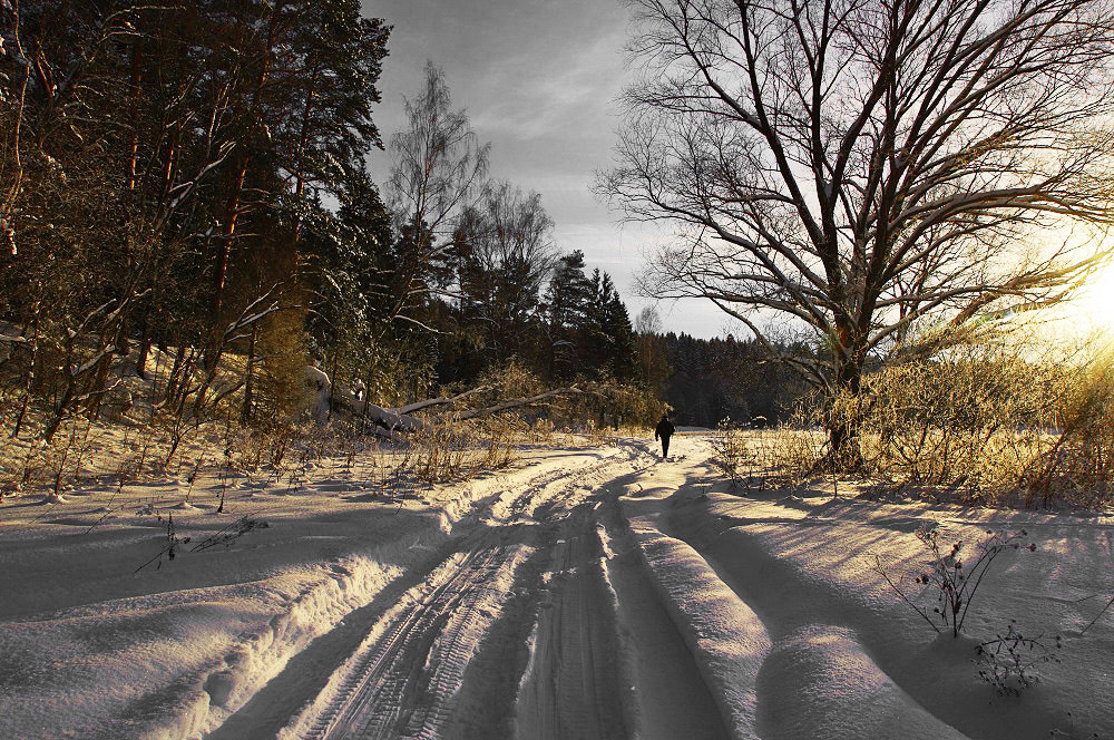 Photograph Winter road by I'm Olga on 500px