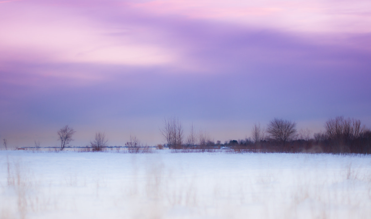 Photograph one winter by Diana Tula on 500px