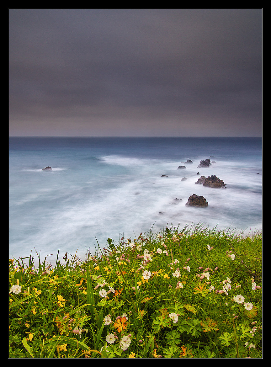 Photograph A storm is coming by Israel Gutiérrez on 500px