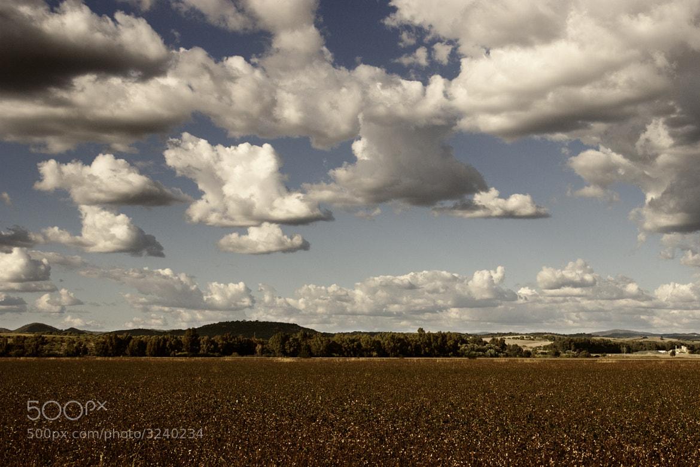 Photograph My land by Antonio Jesús Palma Aranda on 500px