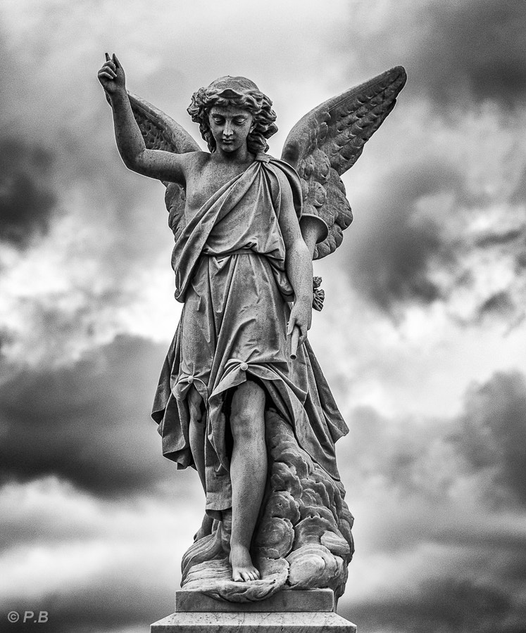 Photograph Cementerio Colon by Peter Bijsterveld on 500px