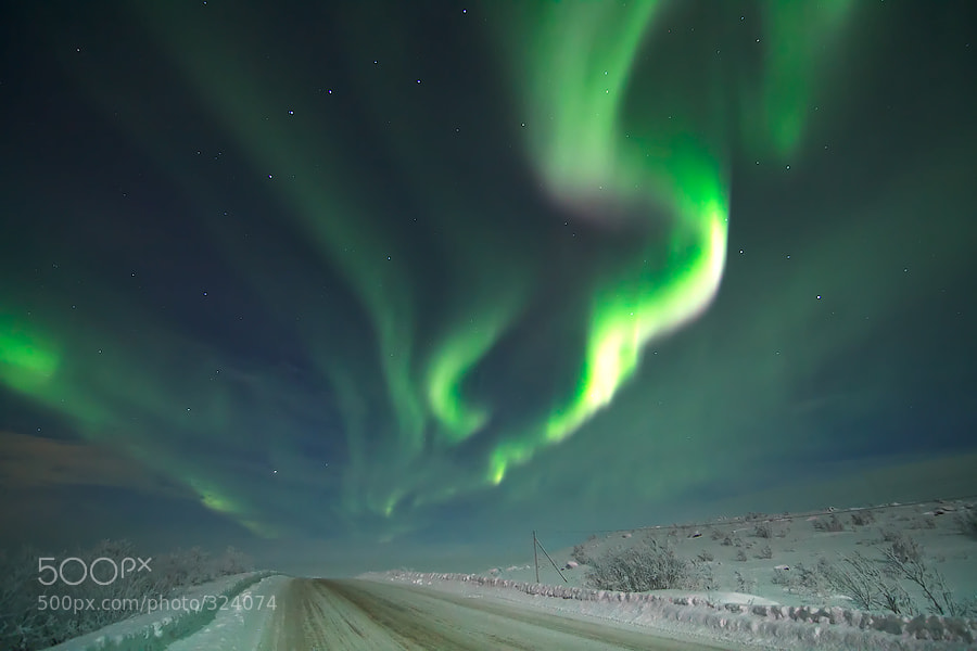 Photograph Aurora Borealis by Maxim Letovaltsev on 500px