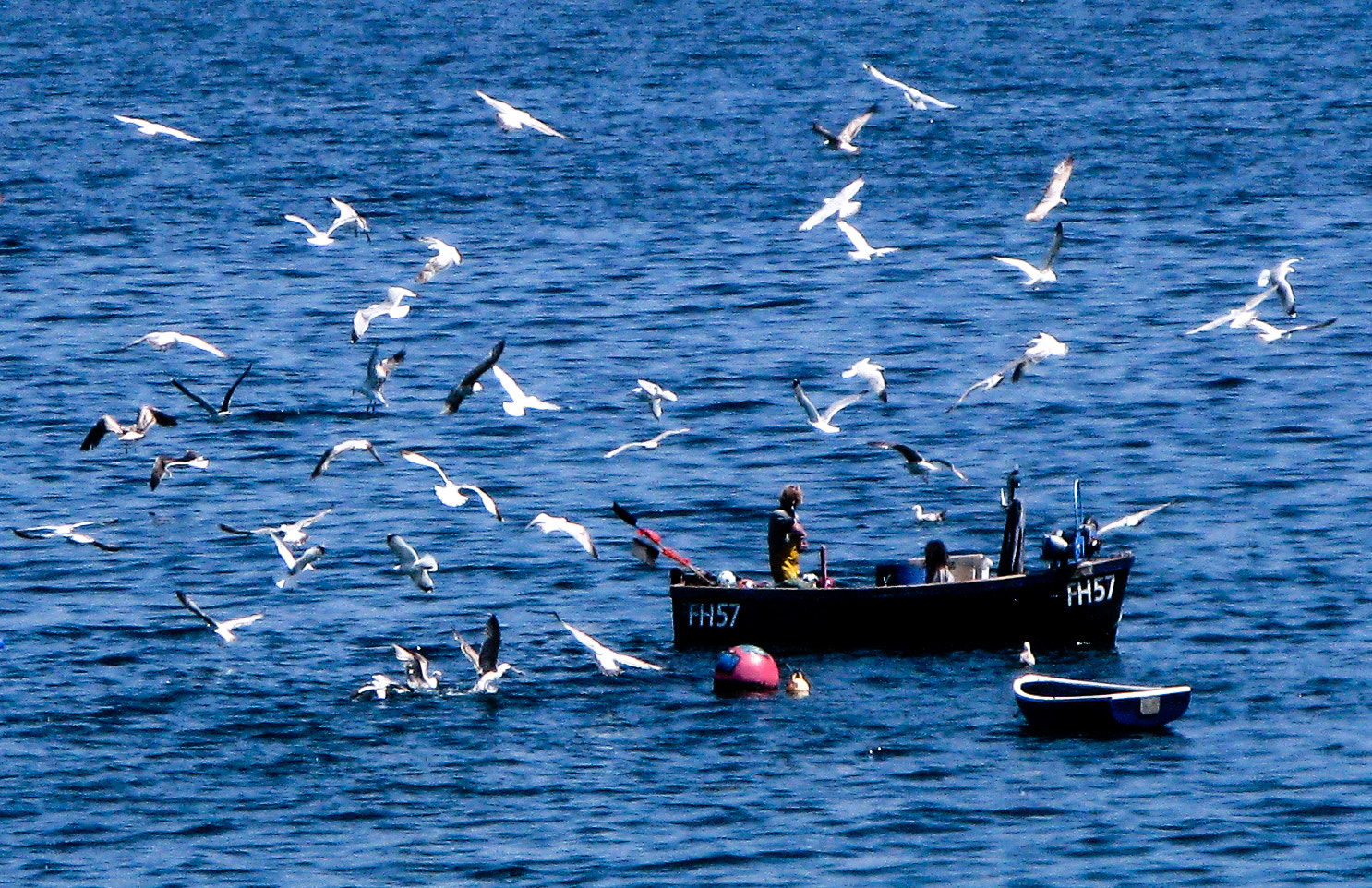 Photograph Sharing the Catch by RALPH  on 500px