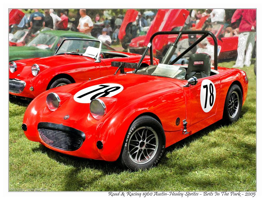 1960 Austin-Healey Sprite Racer