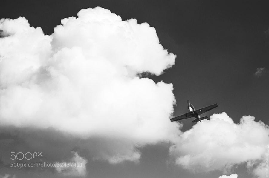 flying by Tolik Maltsev on 500px.com