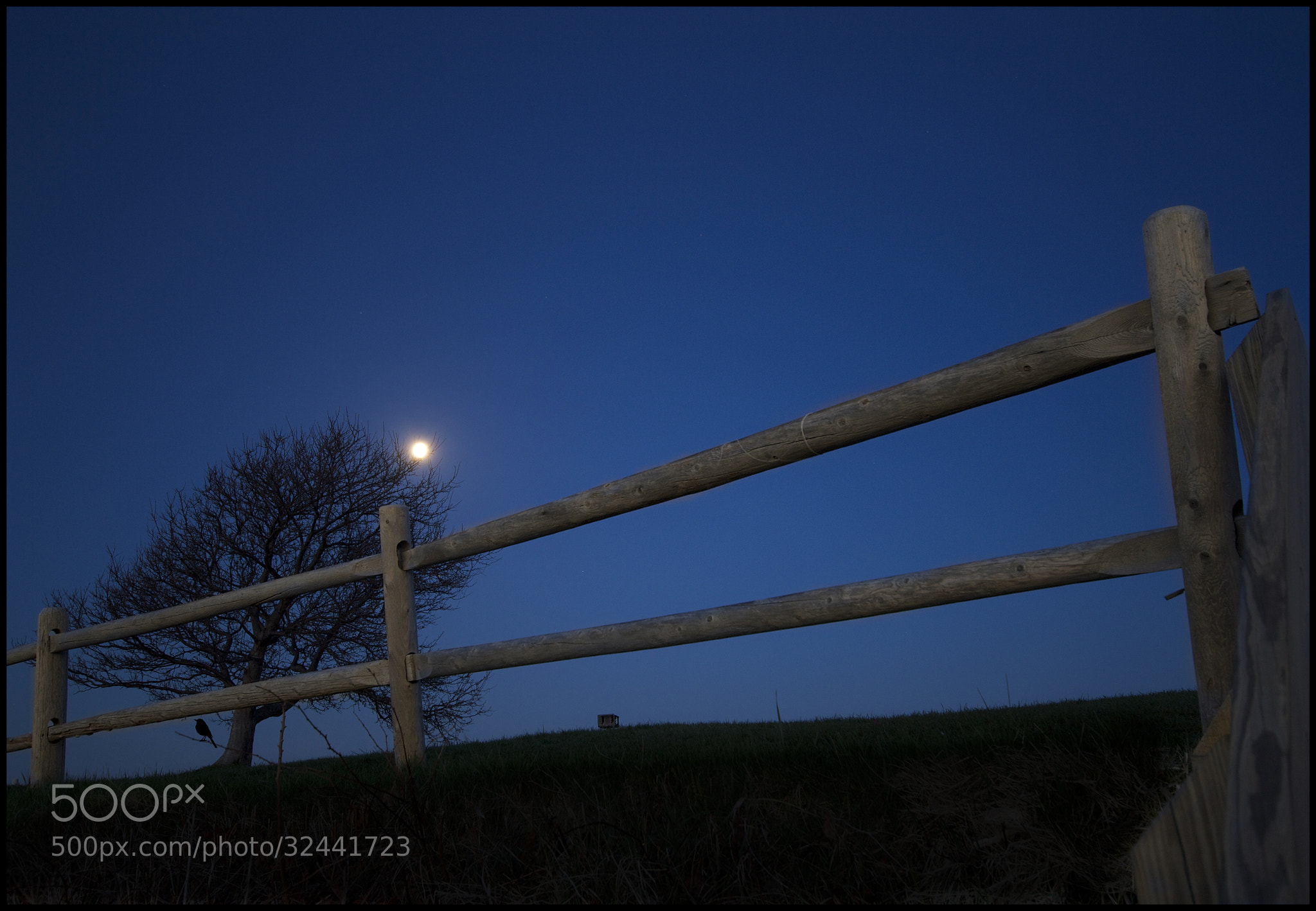 Photograph Blue Hour Moon by Kerim Hadzi on 500px