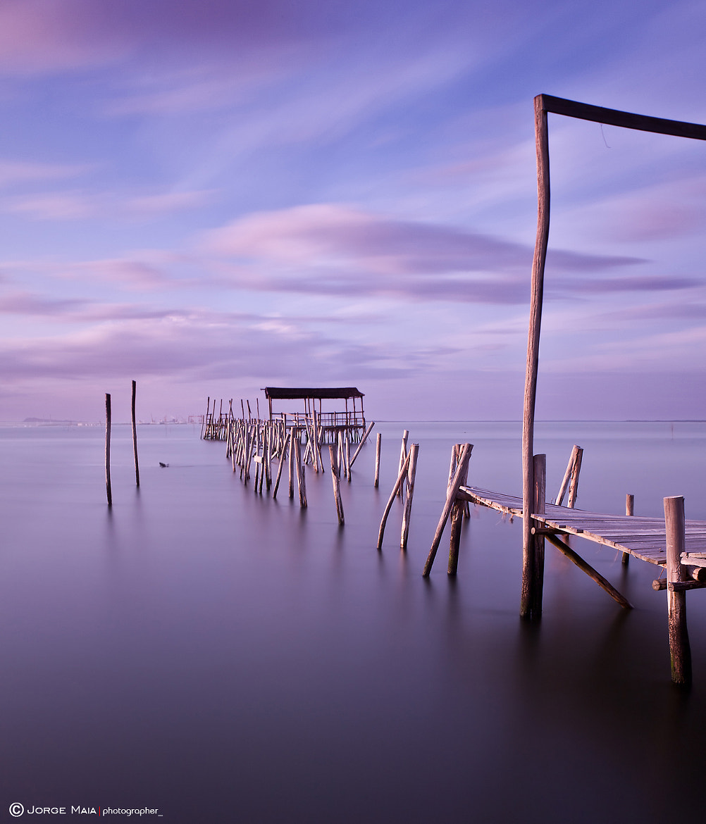 Photograph Glorious  by Jorge Maia on 500px