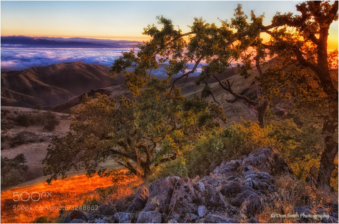 Photograph Summer Evening Atop Fremont Peak by Don Smith on 500px
