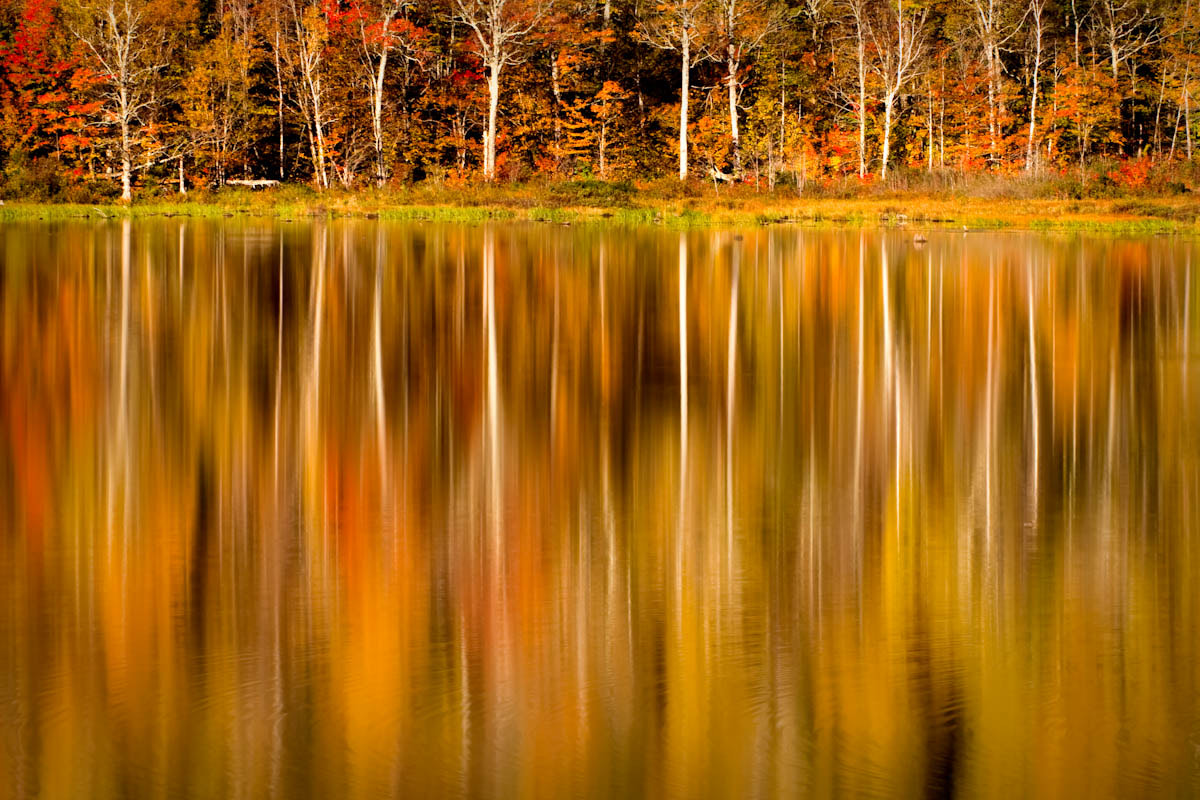 Photograph Basin Pond reflections by Chris Drew on 500px