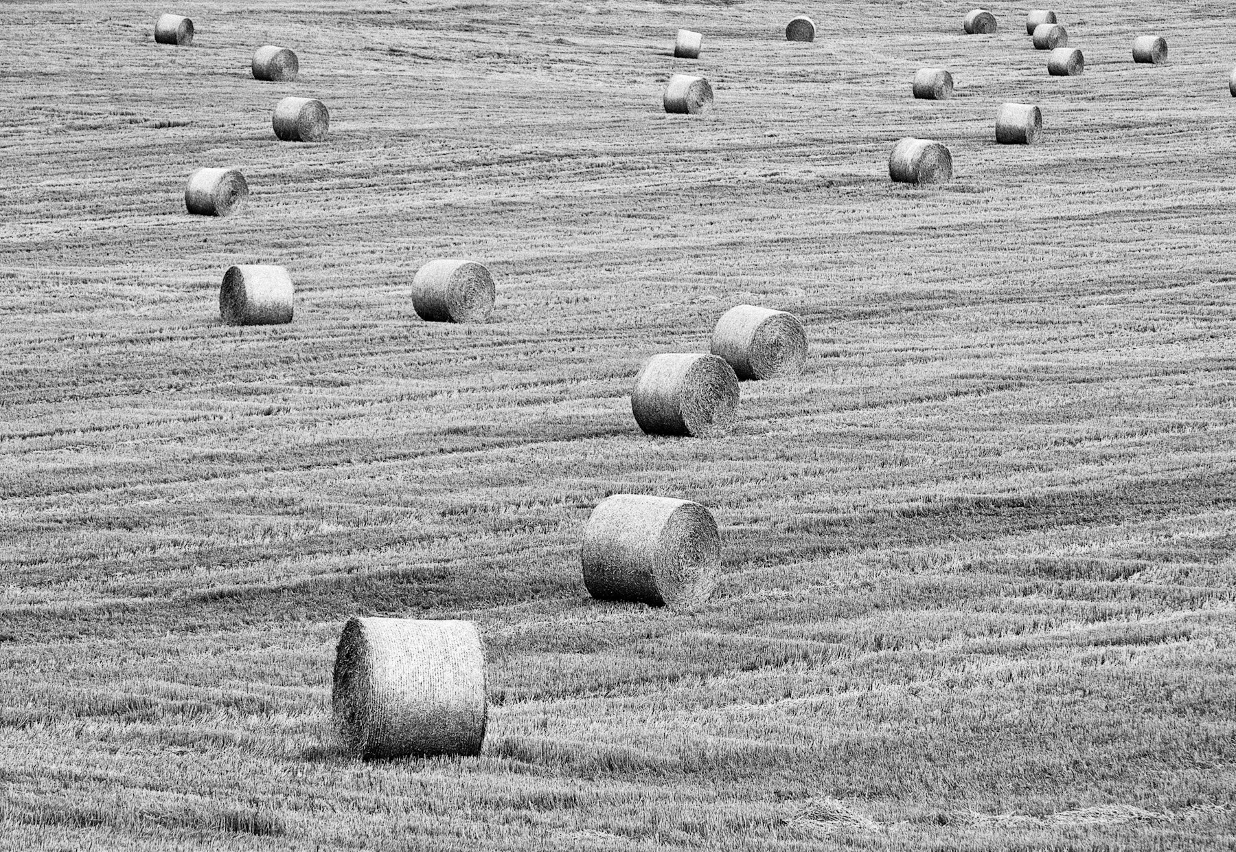 Photograph rolls of hay by Paul Werner Suess on 500px