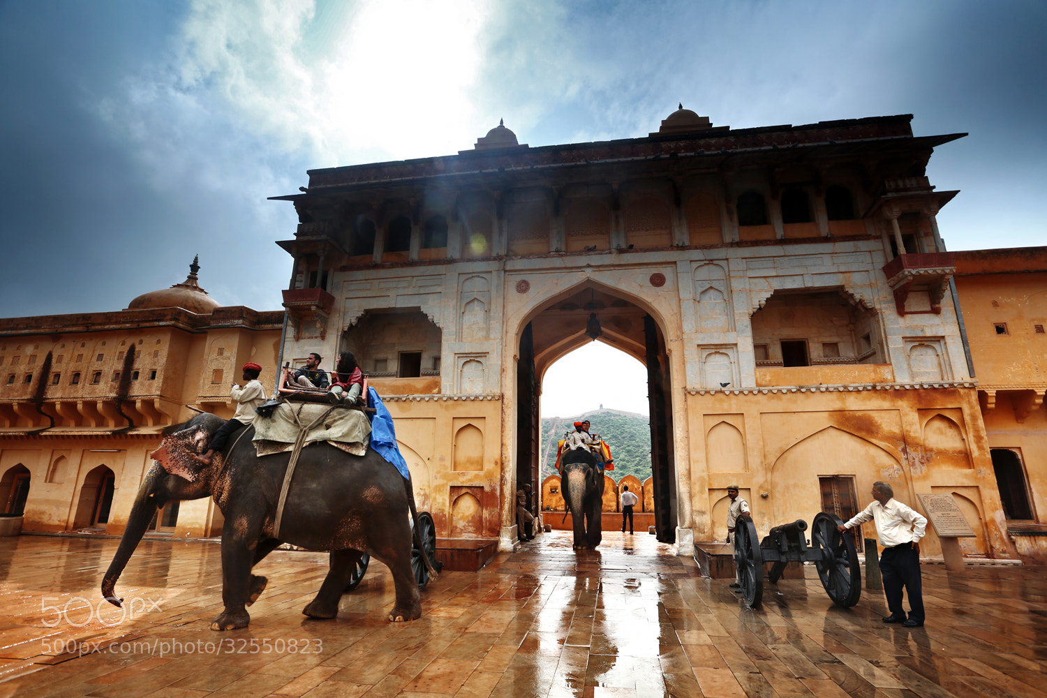 Photograph The entrance of elephants by Woosra Kim on 500px