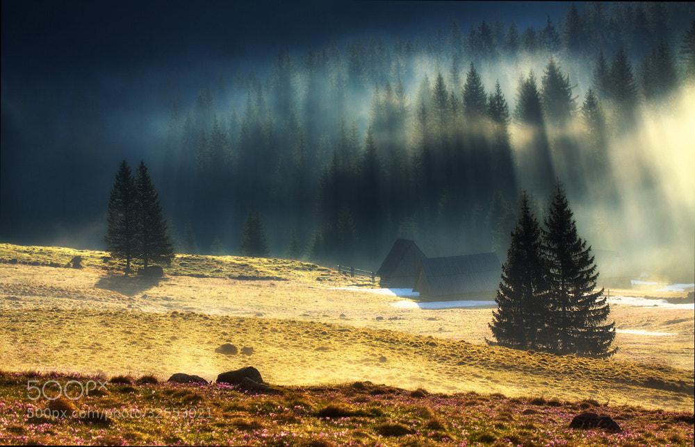 Photograph Misty Morning by Paweł Uchorczak on 500px