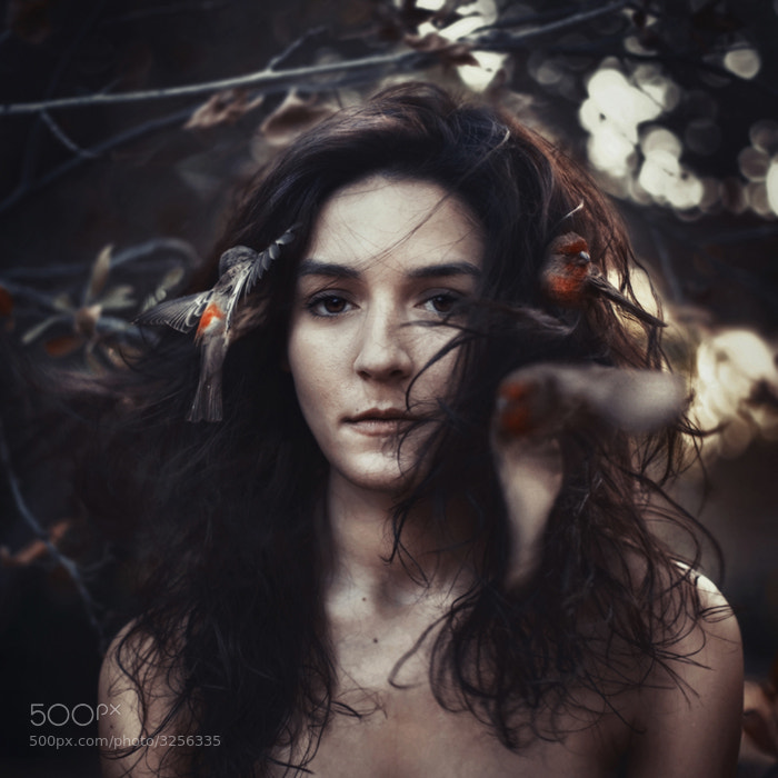 Photograph lassiez faire. by Robby  Cavanaugh on 500px