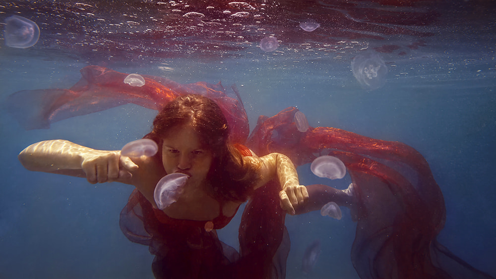 Photograph jellyfish by Dmitry Laudin on 500px