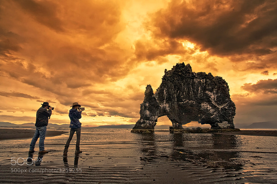 This rock is in the northen-west part of Iceland, and is called Hvítserkur, it's about 15 m high, and looks a lot like dinosaur.   It is possible to buy a print on: http://www.imagio.is