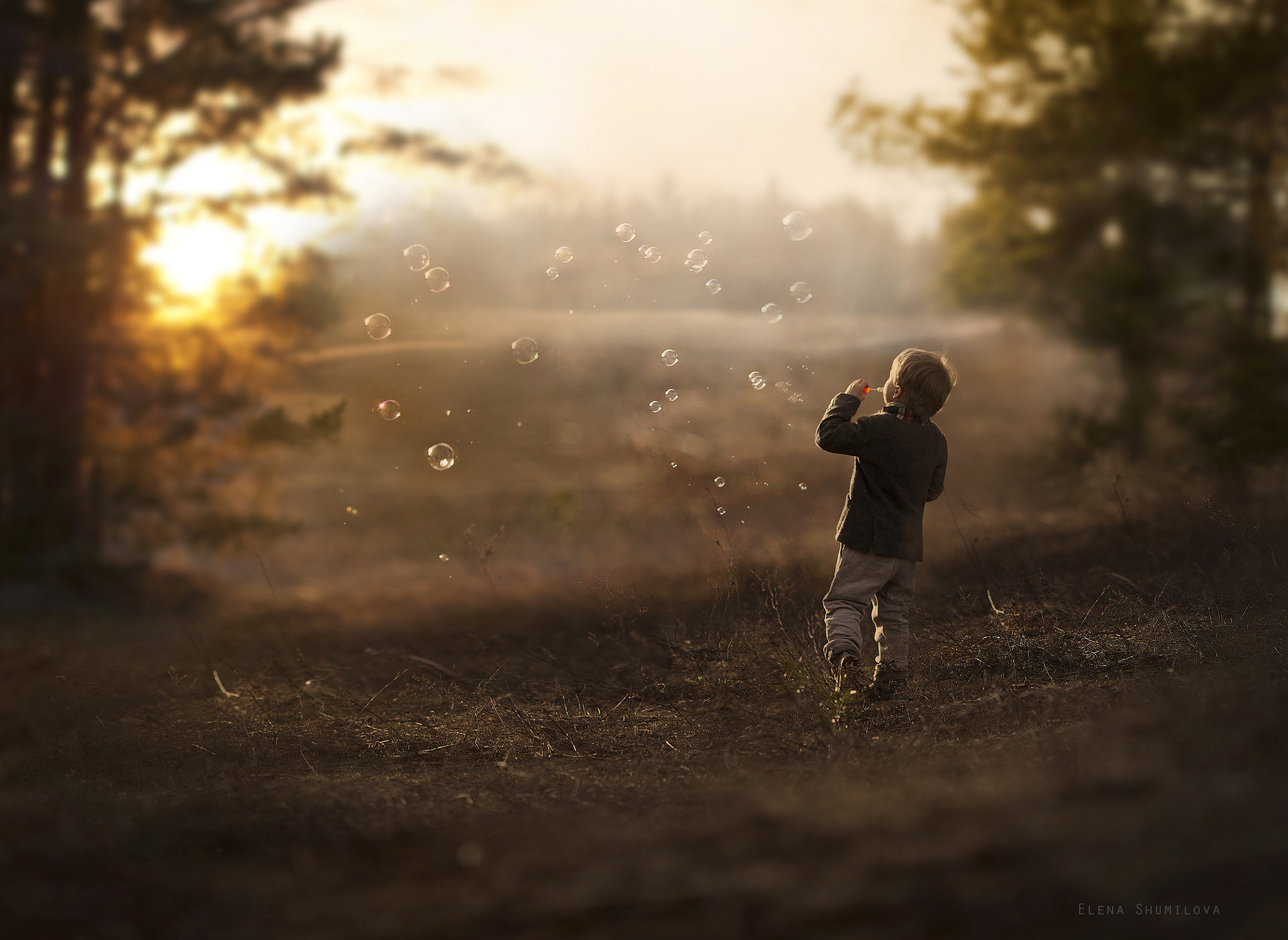 Photograph The end of sunny day by Elena Shumilova on 500px