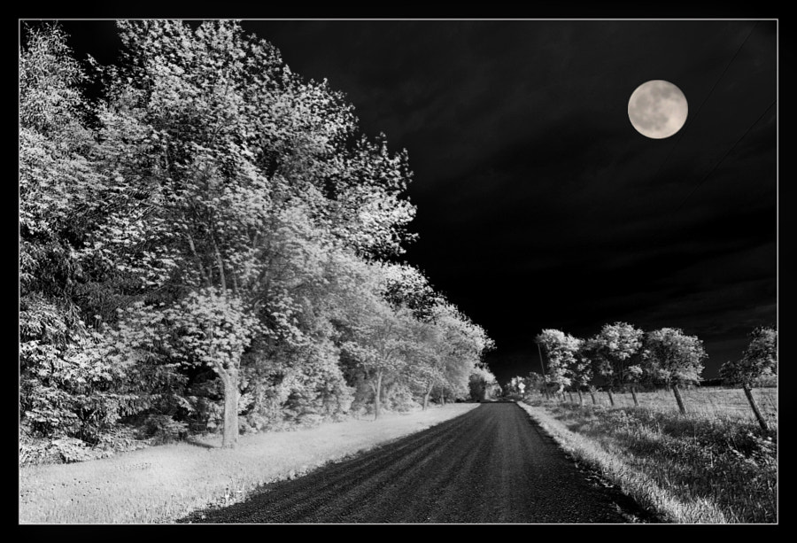 Cole Road Moonshine