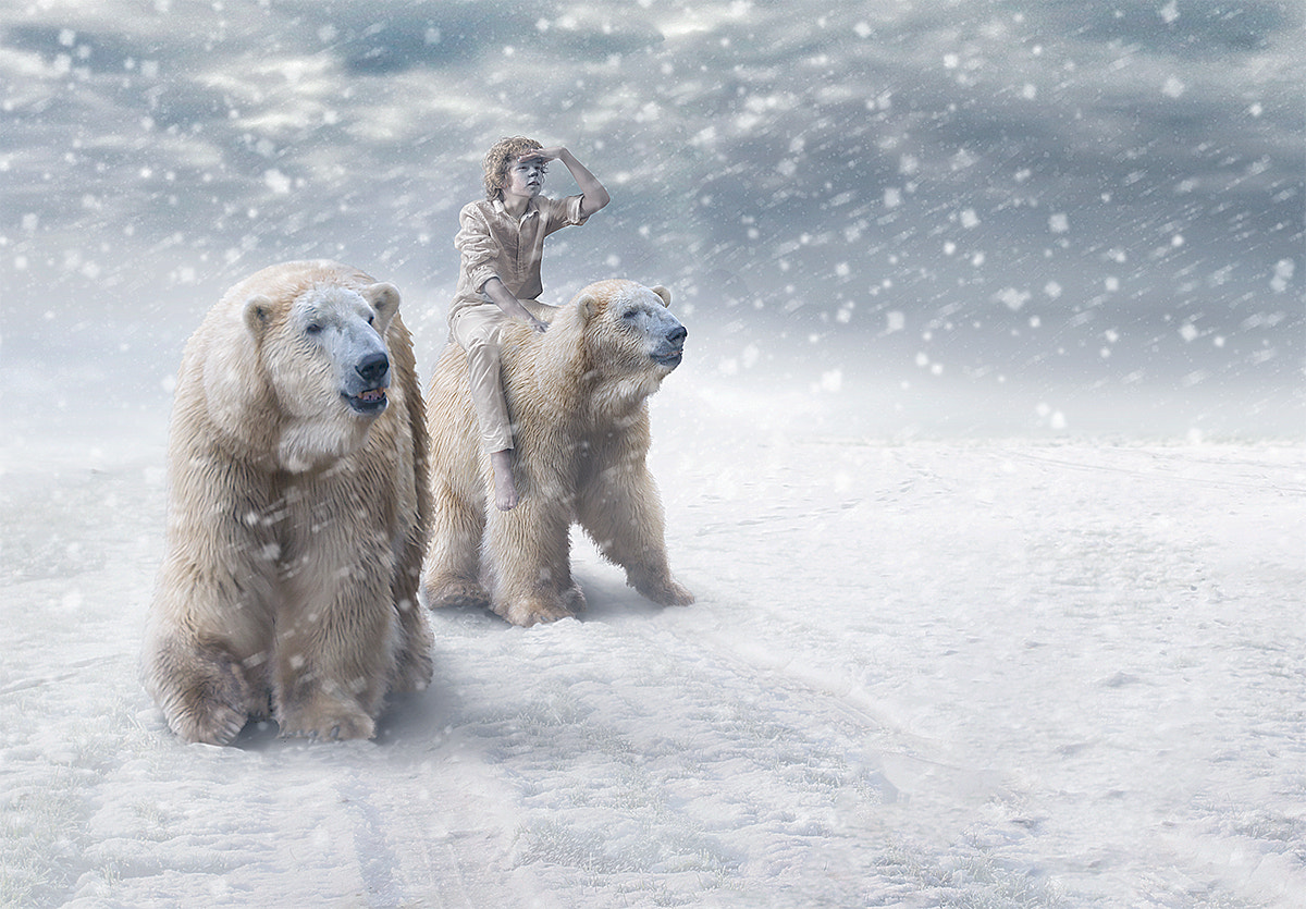 Photograph King of the polar bears by Adrian Sommeling on 500px
