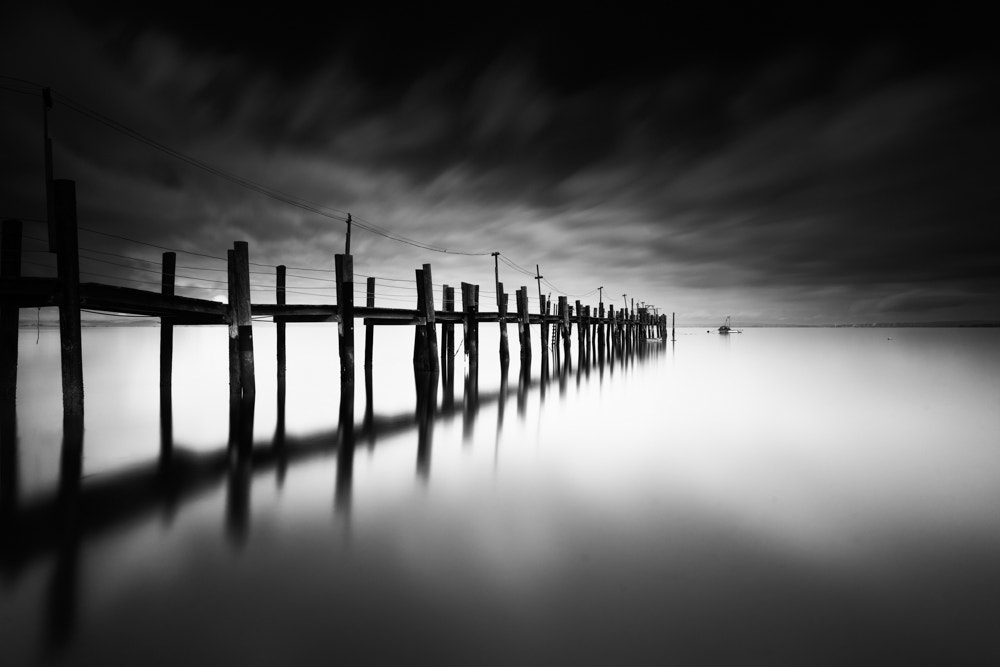 Photograph China Camp State Park Pier 1 by Grant Murray Photography on 500px
