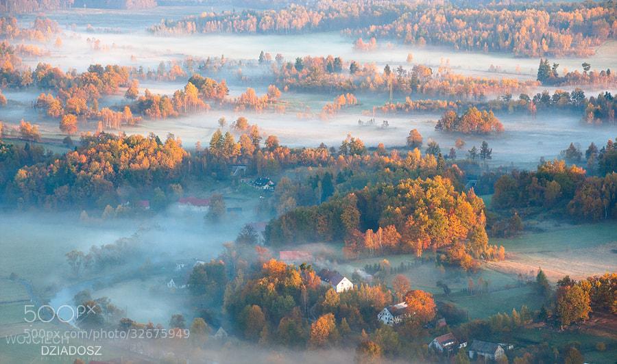 Photograph Golden Autumn IV by Wojciech Dziadosz on 500px