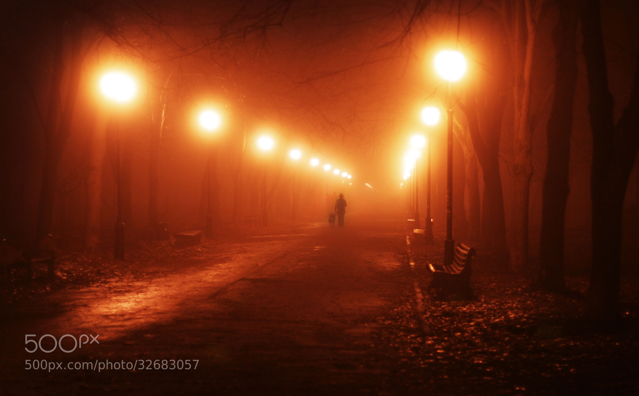 Photograph Untitled by igor kostromin on 500px