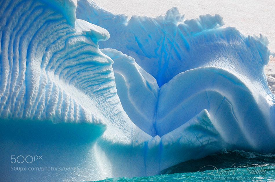 Photograph Swirls by David C. Schultz on 500px