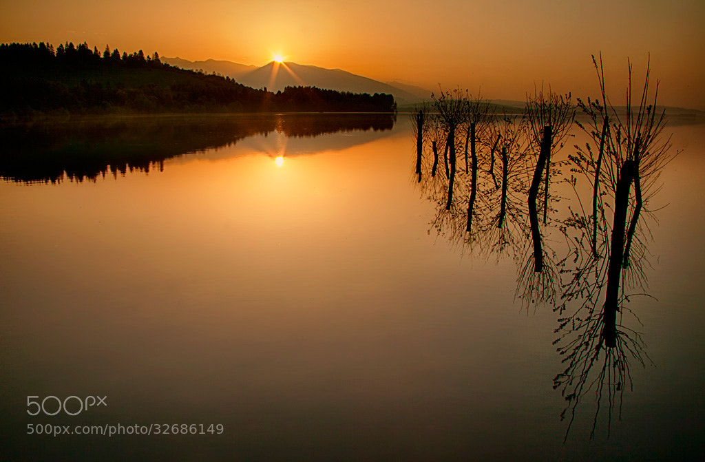 Photograph When the Sun Rises by Martin Sprušanský on 500px