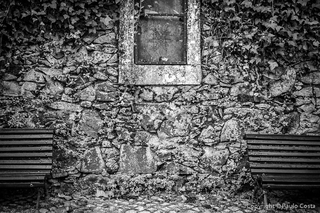 Photograph Empty by Paulo Costa on 500px