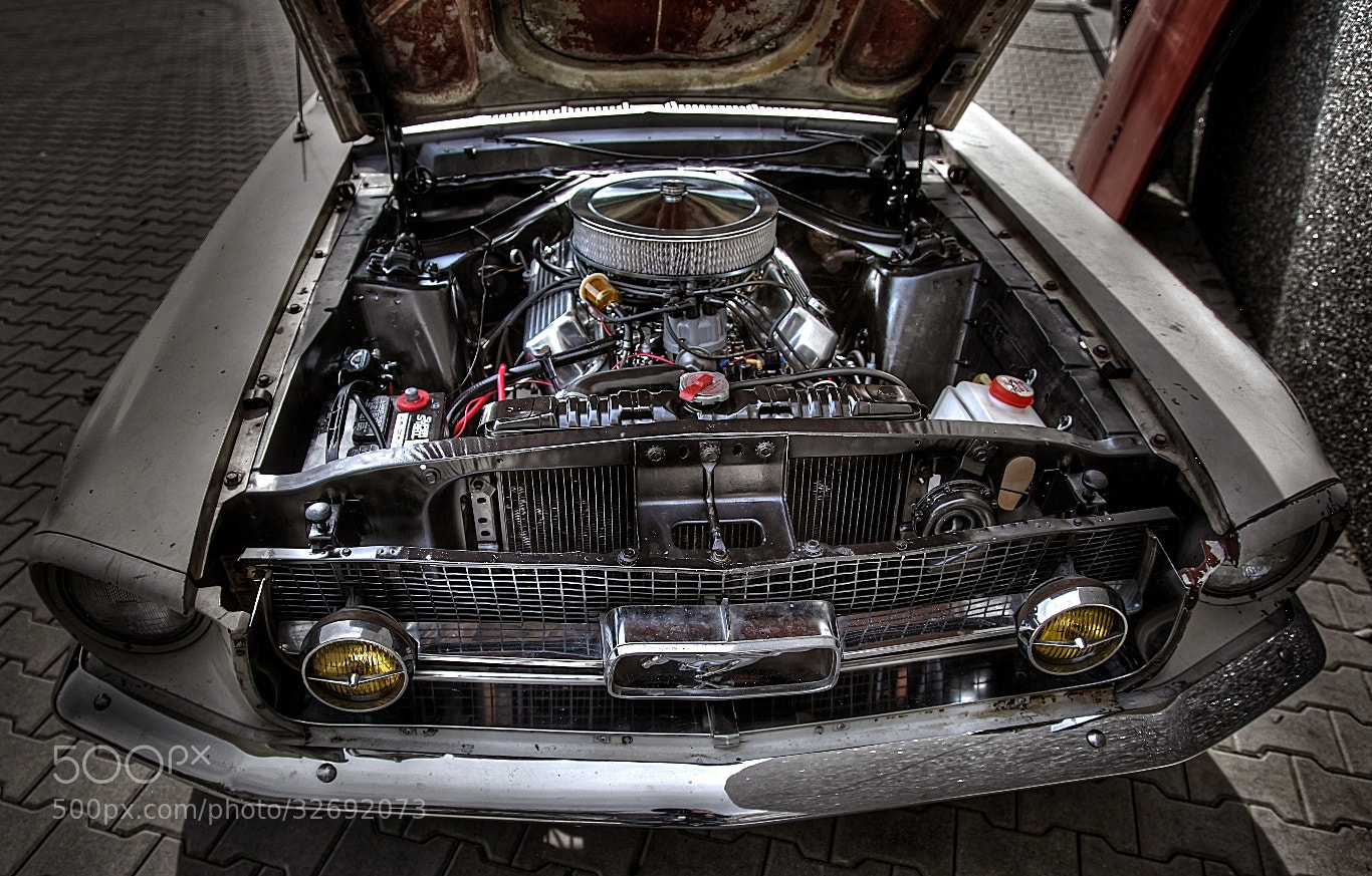 Photograph Pure Mustang power by Koen Domus on 500px