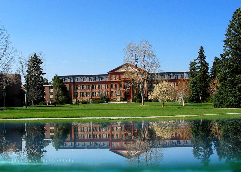 regis university adult